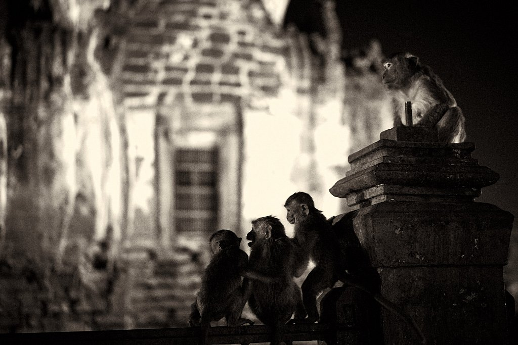 The Guardians of the Temple